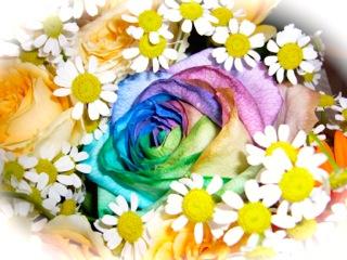 レインボーローズの花束