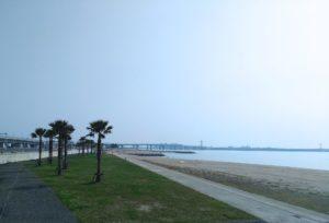 海岸の様子