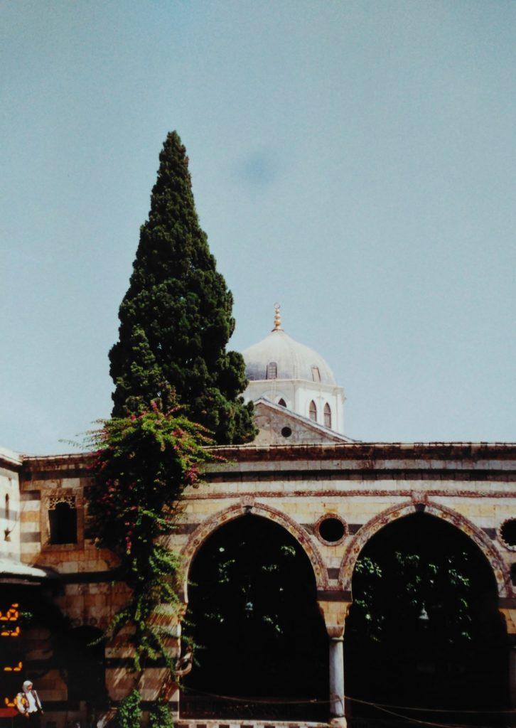 ウマイヤドモスクのドームが見える