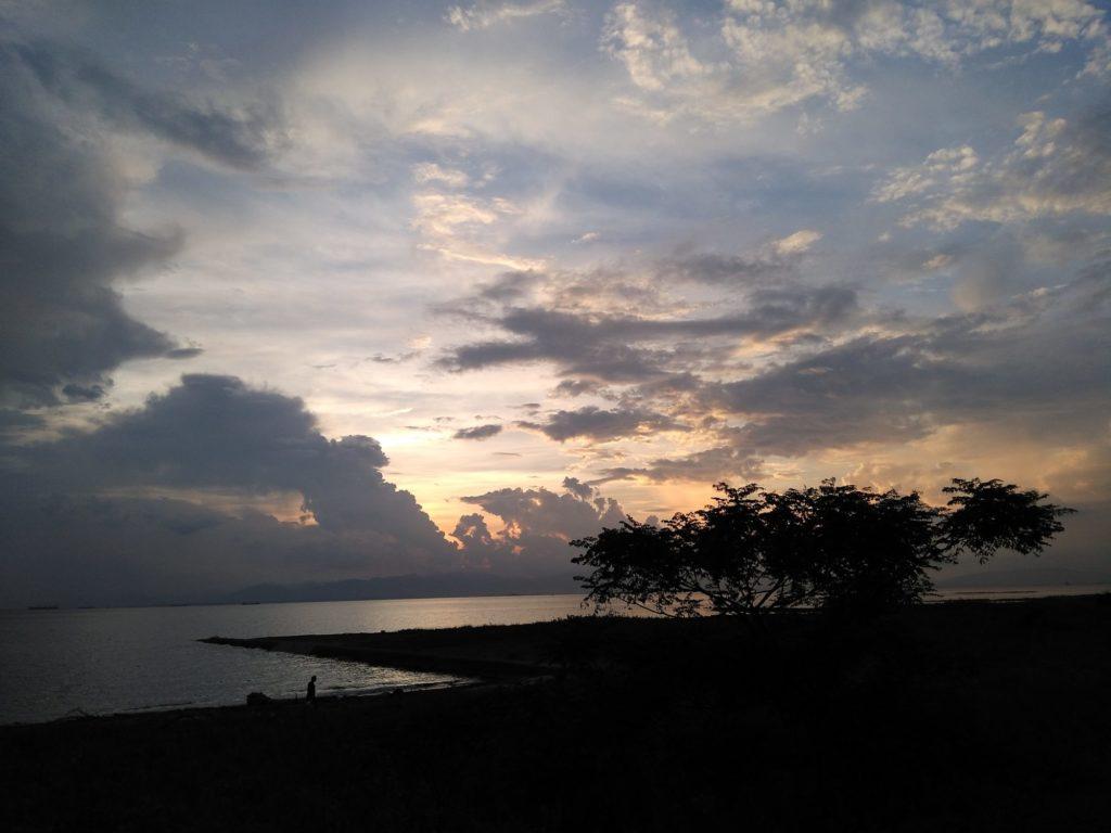 夕日と木のシルエット2