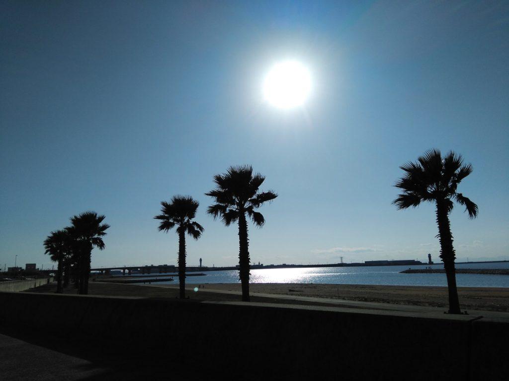 空港前島海岸