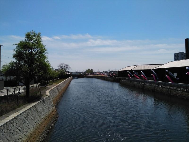 半田運河鯉のぼり