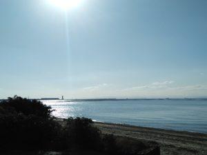 海岸から空港を望む